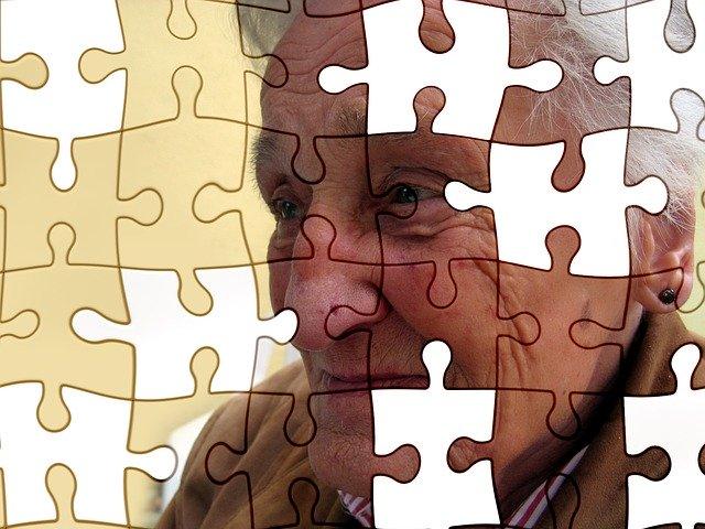 Alzheimer's Disease A Puzzle